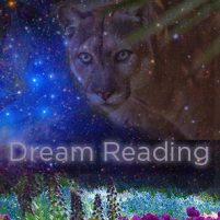 Dream Reading Workshop